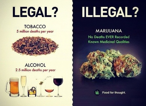 legal-vs-illegal-see-the-problem.jpg